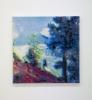 Nikolaus Utermöhlen: Endangered Landscapes