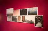 Nebbione, Ausstellungsansicht